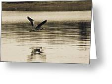 Crossing The Lake Greeting Card