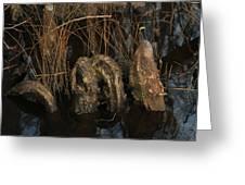 Cypress Knee Monster Greeting Card