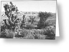 Desert Greenery Greeting Card