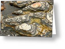 Detail Of Eroded Rocks Swirled Greeting Card