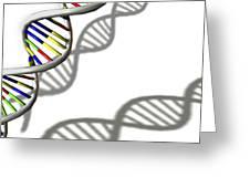 Dna Molecule Greeting Card
