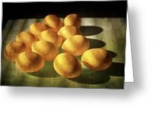 Eggs Lit Through Venetian Blinds Greeting Card