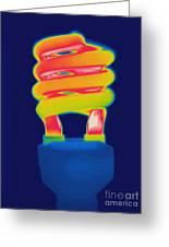 Energy Efficient Fluorescent Light Greeting Card
