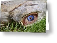 Eye Of A Dinosaur Lightning Greeting Card
