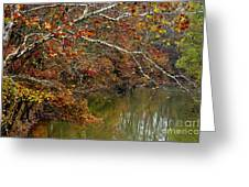 Fall Along West Fork River Greeting Card