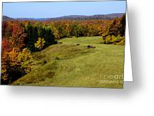 Fall Color Randolph County West Virginia Greeting Card