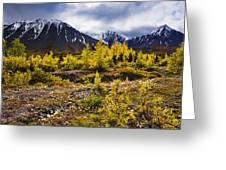 Fall Colours And Auriol Range, Kluane Greeting Card