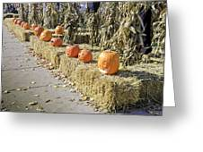 Fall  Halloween On Tillson Street Greeting Card