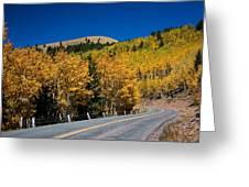 fall in Ruidoso Greeting Card