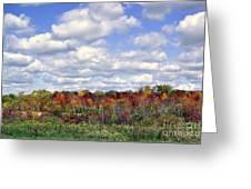 Fall In Wisconsin Greeting Card