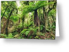 Fern Tree Greeting Card by MotHaiBaPhoto Prints