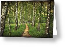 Find Your Way Back Home Greeting Card