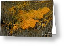Fine Art Of Nature Greeting Card