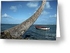 Fishing Boat And Palm Trunk Greeting Card