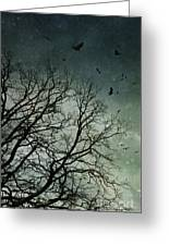 Flock Of Birds Flying Over Bare Wintery Trees Greeting Card
