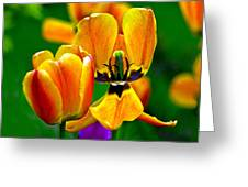 Flower 3 Greeting Card