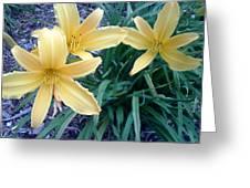 Flower Greeting Card by Leslye Miller