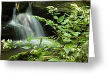 Flowers And Falls Greeting Card
