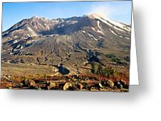 Flowers On Mount St. Helens Greeting Card