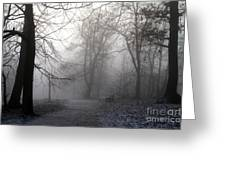 Fog In Forest Greeting Card