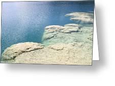 Freshwater Reef Greeting Card
