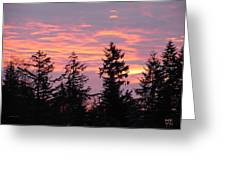 Frosted Morning Silhouette Greeting Card