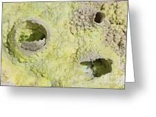 Fumarole Deposits In The Dallol Greeting Card