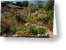 Gardens In Carmel Monastery Greeting Card