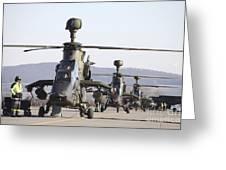 German Tiger Eurocopters At Fritzlar Greeting Card