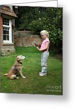 Girl Playing With Dog Greeting Card by Mark Taylor