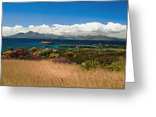 Gorse And Rhododendron Bushes Greeting Card