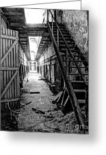 Grim Cell Block In Philadelphia Eastern State Penitentiary Greeting Card