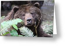 Grizzley - 0011 Greeting Card