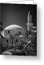 Hala Sultan Tekke Mosque Larnaca Republic Of Cyprus  Greeting Card