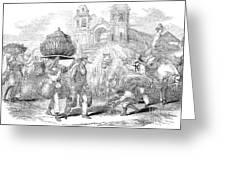 Havana, Cuba, 1853 Greeting Card