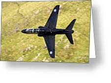 Hawk In Mach Loop Greeting Card