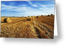 Hay Baling Greeting Card