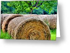 Hay Rolls Greeting Card