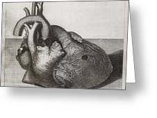 Heart Of King George II, 18th Century Greeting Card