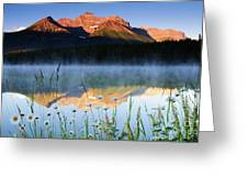 Herbert Lake Greeting Card
