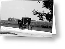 Horse And Buggy On The Road Greeting Card