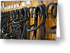Horse Bridles Hanging In Stable Greeting Card by Elena Elisseeva