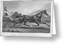 Horse Racing, 1857 Greeting Card