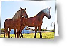 Horses Greeting Card by Jenny Senra Pampin