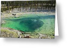 Hot Springs Yellowstone National Park Greeting Card