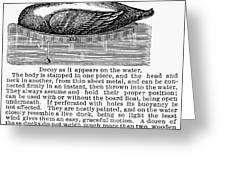 Hunting: Duck Decoy, 1895 Greeting Card