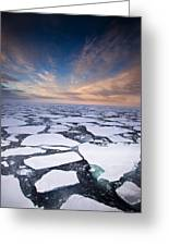 Ice Floes At Sunset Near Mertz Glacier Greeting Card