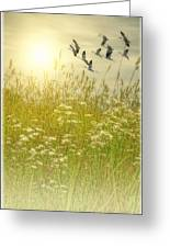 In God's Country Greeting Card