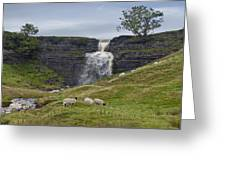 In The Yorkshire Dales Greeting Card
