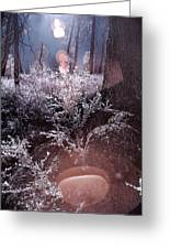 Infrared Flare Greeting Card